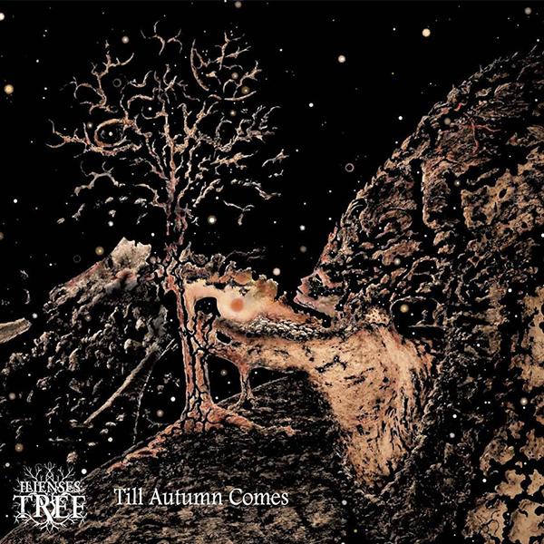 Presentazione nuovo album per gli Ilienses Tree