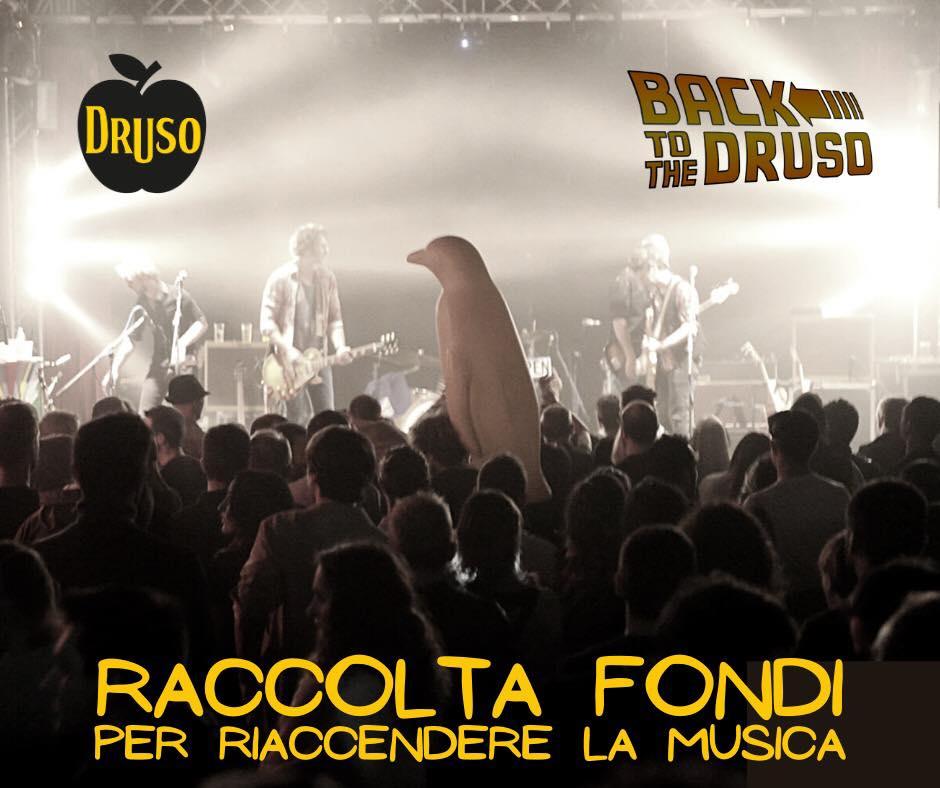 Campagna di raccolta fondi per il Druso di Bergamo