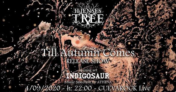 Ilienses Tree domani a Cagliari